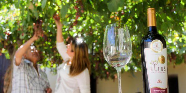 Ruta del vino tucuman