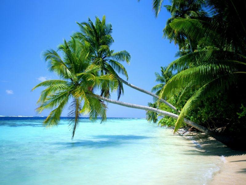 Paquete a Isla Margarita